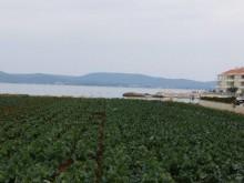 Stavebný pozemok pri Zadare